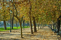 Forestal Park, traditional park of Santiago city