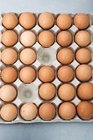 Fresh eggs in carton