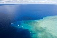 Dive Place Blue Corner, Pacific, Micronesia, Palau