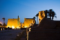 Illuminated Alley of Sphinxes at Luxor Temple, Luxor, Egypt
