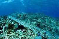 Fishing Net destroys Coral Reef, Benau Waru, Sangihe_Talaud Archipelago, Sulawesi, Indonesia