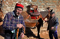 `Festa dels Traginers´, Feast of the muleteer in Balsareny  Comarca del Bages  Eix del Llobregat, Catalonia, Spain