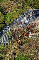 Lost World temple. Mayan ruins of Tikal. Guatemala.