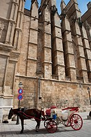 Spain, Balearic Islands, Majorca, Palma de Mallorca, Santa Maria cathedral, carriage
