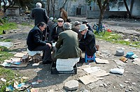 Men playing cards in a park.Tirana. Albania.