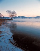 landscape of foggy lake
