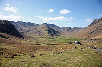 Looking towards the Langdale Fells and Langdale Pikes in the Lake District National Park, Cumbria, England