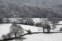 derwent valley, derbyshire, england, a winter landscape in peak district national park