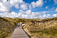 Man and boy hiking on a boardwalk in the dunes, Kampen, Sylt, Germany