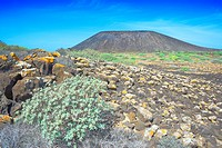 Volcanic landscape, Isla de los Lobos, Fuerteventura, Canary Islands, Spain, Europe