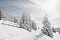 Winterweg03