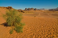 The stunning desert scenery of Wadi Rum, Jordan, Middle East