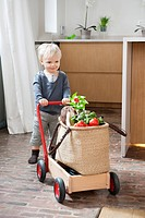 Boy pushing a cart with a vegetable bag on it
