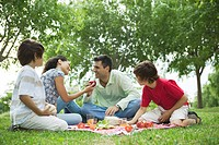 Family enjoying picnic outdoors (thumbnail)