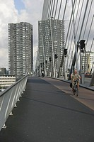 cyclist on the Erasmusbridge, Rotterdam, Holland