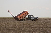 canada, truck, saskatchewan, scenic, field, grain