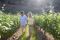 Couple in a sunlit vineyard
