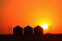 granaries, setting, metal, saskatchewan, behind, sun