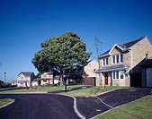 Newbuild traditional stone house with large tree on front lawn on small village housing estate&13,&10,&13,&10,