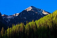 Views of the San Juan Mountains along Colorado Highway 145 near Telluride, Colorado USA