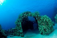 Wreckage of Cousteaus Precontinent 2, Shaab Rumi, Red Sea, Sudan