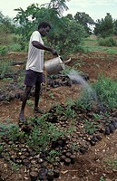 person, watering, sudan, south, people