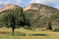 Gudar mountains Teruel province Aragon Spain
