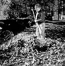Boy with rake cleaning autumn leaves