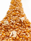 Corn kernels and popcorn