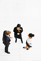 Overhead view portrait of a group of business people standing, discussing work issues in a great white environment