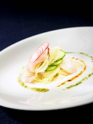 Scallop Ceviche Salad with Fennel, Cucumber and Radish, Chili Oil on White Plate