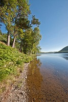 St Mary's Loch Scottish Borders cotland