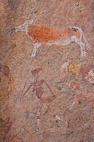 Cave paintings, Brandberg mountain, Namib Desert, Namibia