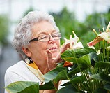 Closeup portrait of an old woman smelling flowers
