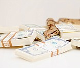 Closeup of a ball python placed over a scattered bundle of a American currency
