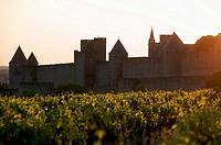 The Castle of Carcassonne. Aude. France