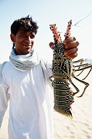 Middle East, Oman, harbour of Sur, lobster.