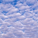 Clouds in sky, low angle view
