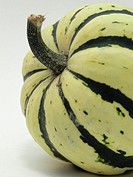 Winter squash