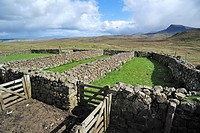 Dry stone sheep pen on the Isle of Skye, Inner Hebrides, Scotland, UK