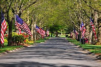 Portland, Oregon, United States Of America, American Flags Lining The Road On Memorial Day