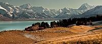 High country sheep station above Lake Pukaki, Mt Sefton left and Aoraki / Mt Cook, winter, Canterbury, New Zealand.