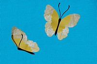 Two butterflies against blue background