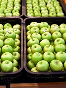 Green apple in plastic crate