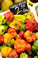 Hot peppers in the Sant Josep market (aka La Boqueria), Barcelona, Catalonia, Spain.