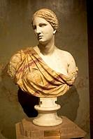 -Bust of Venus- Wien (Austria).