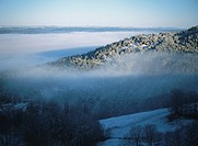 Fog Over Tree Covered Mountains in Winter. Auvergne, France