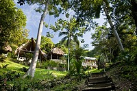 Jungle private resort