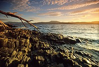 Rocky banks of Huon River in the morning, Tasmania, Australia
