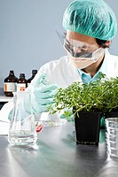 A lab technician inspecting a seedling in a Petri dish in a laboratory
